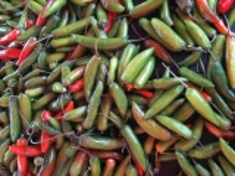 Dia de Mercado (Tianguis) no bairro de SantaTeresita